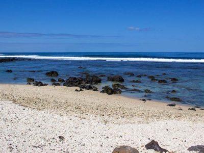 Location saisonnière Saint Pierre à la Réunion plage