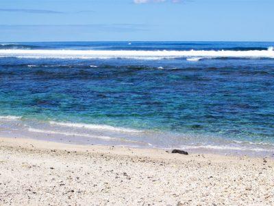 Plage Terre Sainte - l'île de la Réunion